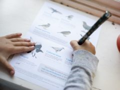 Locked-down Britons have shown a surge in interest in taking part in this year's Big Garden Birdwatch (Eleanor Bentall/RSPB/PA)