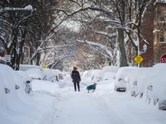 A person walks a dog in the Edgewater neighbourhood after a snowstorm in Chicago (Pat Nabong /Chicago Sun-Times via AP)