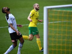 Teemu Pukki netted the winner for Norwich against Rotherham (Joe Giddens/PA)