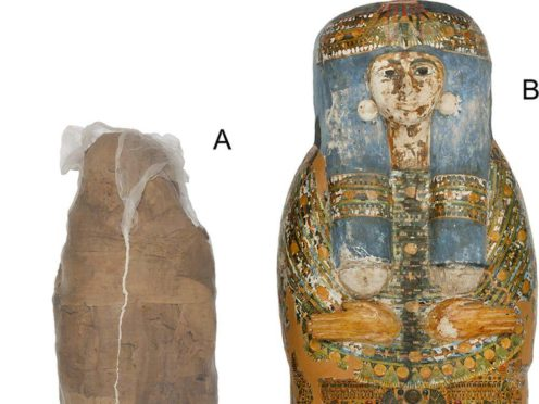 Mummified individual and coffin in the Nicholson Collection of the Chau Chak Wing Museum (Sowada et al/PLOS One)