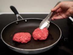 Meat consumption linked to common illnesses (PA)
