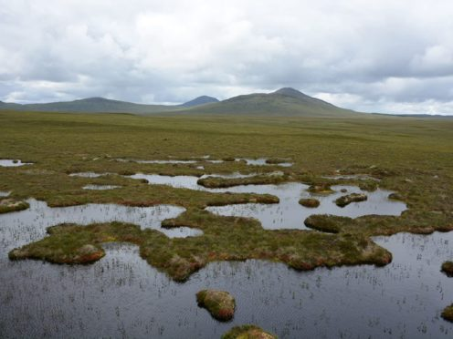Environmental charities have said that restoring Scotland's peatlands could create jobs (Siobhan Fraser/WWF Scotland/PA)