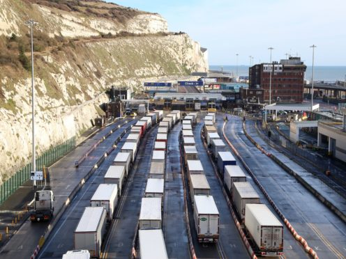 Lorries queue for the frontier control area at the Port of Dover in Kent (Gareth Fuller/PA)