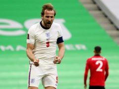 Gareth Southgate knows he has a world-class striker in England captain Harry Kane (Hektor Pustina/AP)