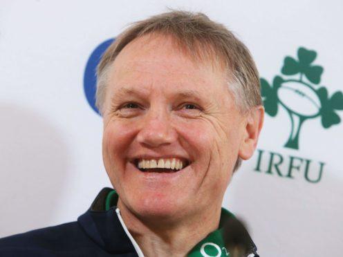 Joe Schmidt (pictured) replaced Declan Kidney as Ireland head coach (Brian Lawless/PA)