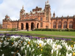 Crocuses at the entrance to the Kelvingrove Art Gallery and Museum in Glasgow (Andrew Milligan/PA)