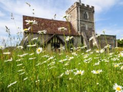 St John's Church Duxford with wildflowers in the foreground (Adrian Powter/Church of England/PA)