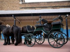 The driving carriage used by the Duke of Edinburgh, at Windsor Castle, Berkshire (Steve Parsons/PA)