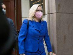 Liz Cheney (J Scott Applewhite/AP)