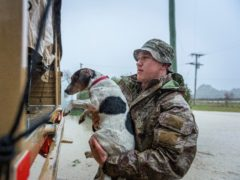 A member of the New Zealand Defence Force rescues a dog from floods as they assist a family with their evacuation near Ashburton in New Zealand's South Island (Corporal Sean Spivey/NZDF via AP)