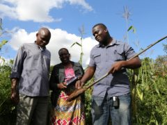 Study reveals postcode lottery of nutrient intake from crops (University of Nottingham/PA)
