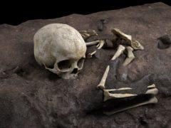Reconstruction of Mtoto's position in the burial pit (Jorge González/Elena Santos/PA)