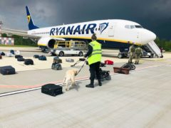 Security use a sniffer dog to check the luggage of passengers on the Ryanair plane carrying opposition figure Roman Pratasevich (ONLINER.BY via AP)