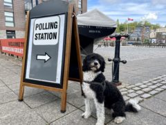 Dogs at polling stations were among the sights catching voters' interest (Claire Hayhurst/PA)
