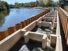 The Diglis fish pass in Worcester will help twaite shad navigate further up the River Severn (Unlocking The Severn/PA)