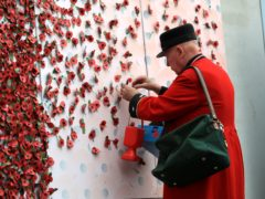 A member of the British Royal Legion adds a poppy to a wall of poppies. Credit: John Walton/PA Wire