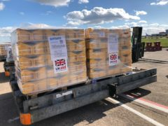 UK aid waiting to be loaded onto a plane at Doncaster-Sheffield airport for Maputo in Mozambique (Department for International Development/PA)