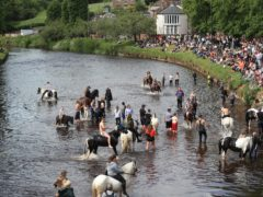 People riding horses in the river Eden during the Horse Fair in Appleby (Danny Lawson/PA)
