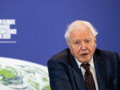 Sir David Attenborough (Chris J Ratcliffe/PA)