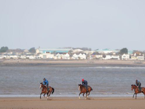 Horses on Ogmore Beach in Glamorgan (David Davies/AP)