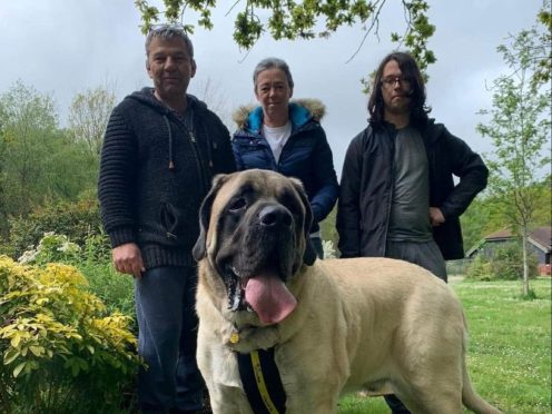 Galahad with his new owners (Dogs Trust/PA)