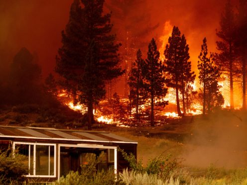 The Tamarack Fire burns behind a greenhouse in the Markleeville community of Alpine County, California (Noah Berger/AP)