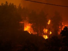 Wildfire approaching a house, burns trees at Pefki village on Evia island, about 118 miles north of Athens (AP)