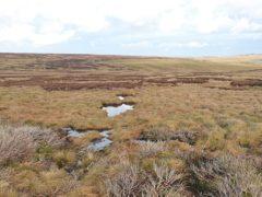 West Arkengarthdale Moor in the Yorkshire Dales, where 1,395 hectares of peatland has been restored