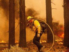 A firefighter battles a blaze near South Lake Tahoe, California (Noah Berger/AP)