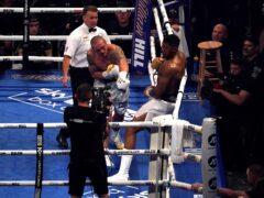 Usyk dominated Joshua (Nick Potts/PA)