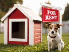 Landlords are refusing tenants with pets, according to research (PetsScore/PA)