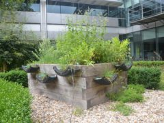 Recycled car tyres have been used in the raised beds