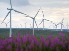 Some wind farms could be 'repowered', the Scottish Government said (Andrew Milligan/PA)