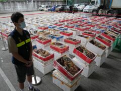 Australian lobsters have been seized by Hong Kong customs during an anti-smuggling operation (Kin Cheung/AP)