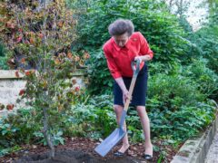 The Princess Royal pictured planting a tree in the garden of the British Ambassador's official residence during her official visit to France (Nicola Gleichauf/Frank Barylko)