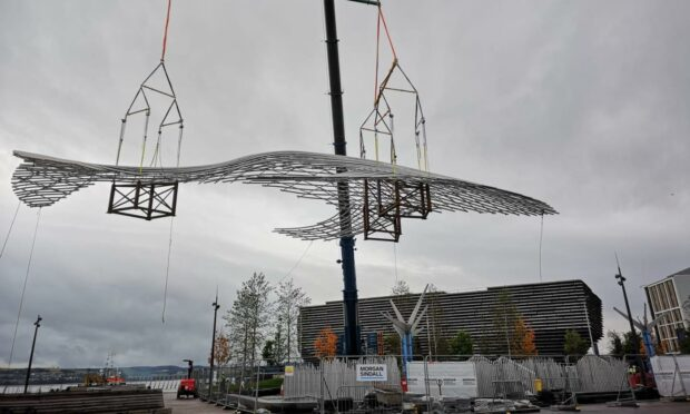 VIDEO: Whale sculpture installed at Dundee Waterfront after night at port