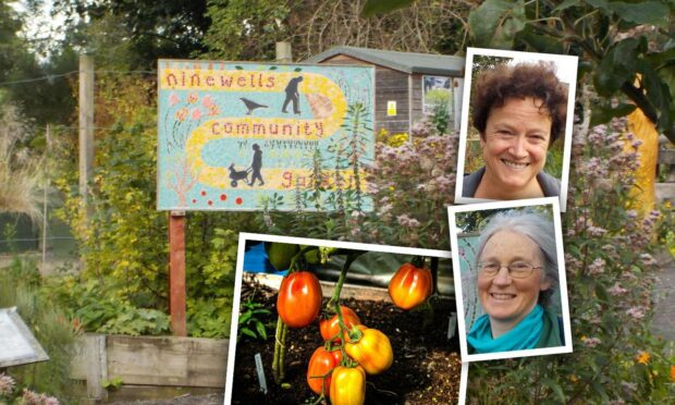 'People should come here': Ninewells Community Garden is 'countryside in Dundee'