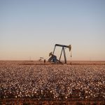 US shale oil production expected to to reach 9million barrels a day by 2025