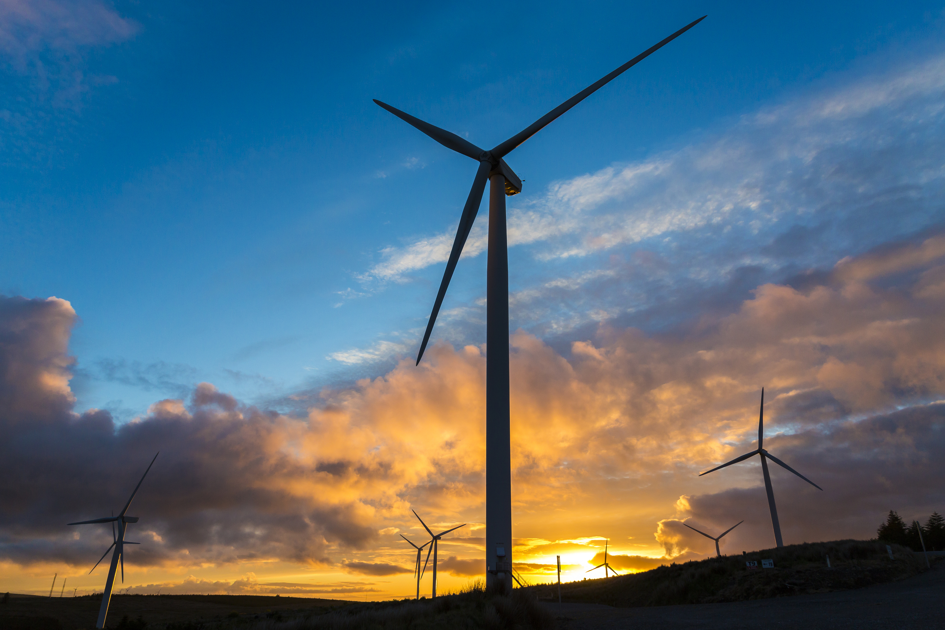 Wind overtakes coal to generate more electricity in 2017