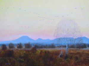 Flanders Flight by Darren Rees, on display in the Bog Gallery.