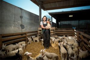 Fiona Bark, shepherdess