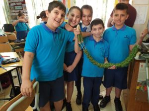 Youngsters trying their hands at stick weaving on Malta. NO F29 weaving in primary school Birkikara