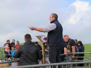 Auctioneer John Walton in action on Saturday.